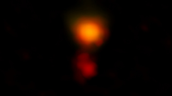 MAMBO-9 image