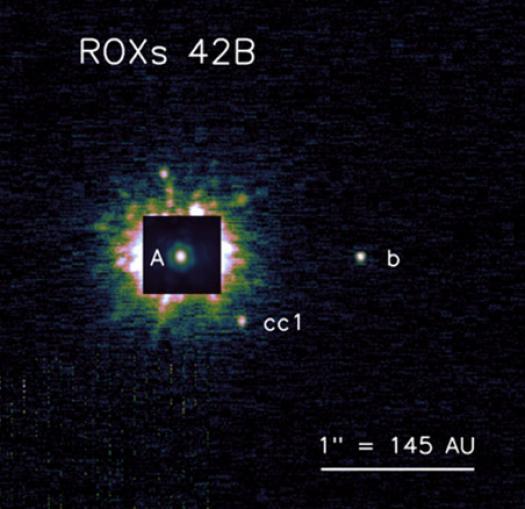 ROXs 42B b