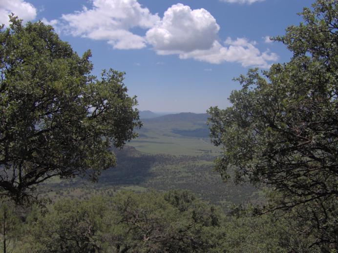 McDonald Observatory vista